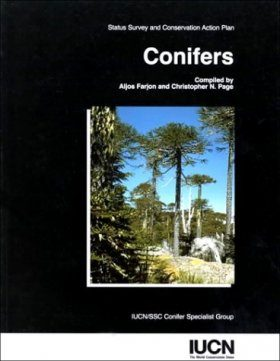 Conifers: Status Survey and Conservation Action Plan