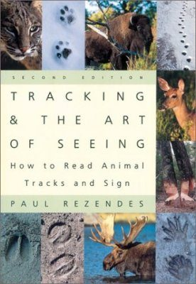 Tracking and the Art of Seeing