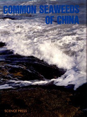 Common Seaweeds of China