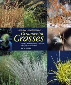 Color Encyclopedia of Ornamental Grasses