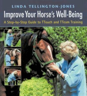 Improve Your Horse's Well-being: A Step-by-step Guide to Touch and Team Training