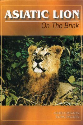 Asiatic Lion: On the Brink
