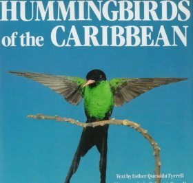 Hummingbirds of the Caribbean