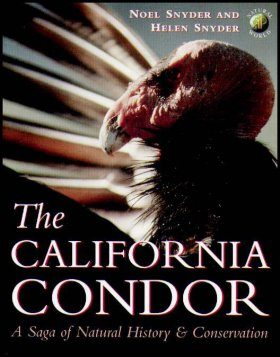 The California Condor