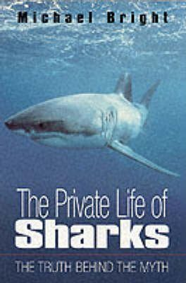 The Private Life of Sharks