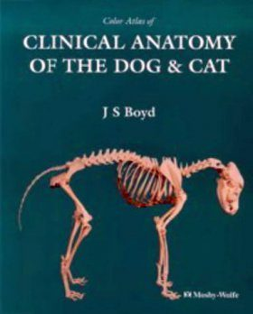 Colour Atlas of Clinical Anatomy of the Dog and Cat