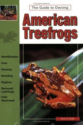 The Guide to Owning American Tree Frogs