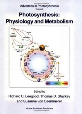 Photosynthesis: Physiology and Metabolism