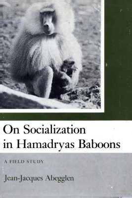 On the Socialization of Hamadryas Baboons