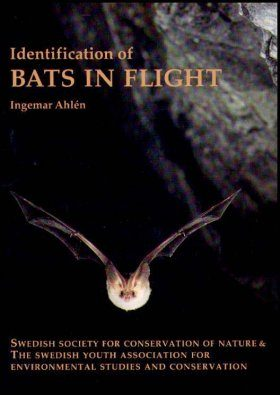 Identification of Bats in Flight