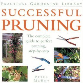 Successful Pruning