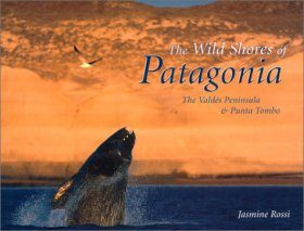 The Wild Shores of Patagonia