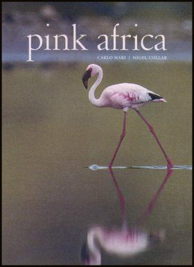 Pink Africa