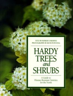 Hardy Tree Shrubs