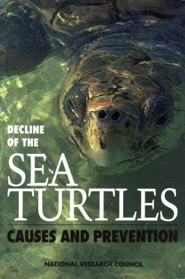 Decline of the Sea Turtles