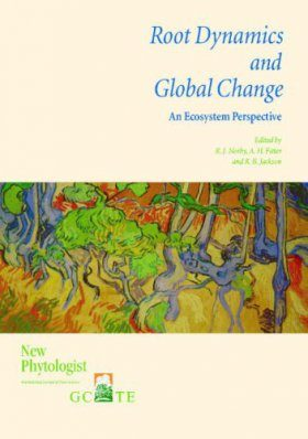 Root Dynamics and Global Change