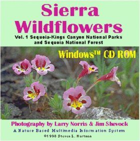 Sierra Wildflowers Vol. 1