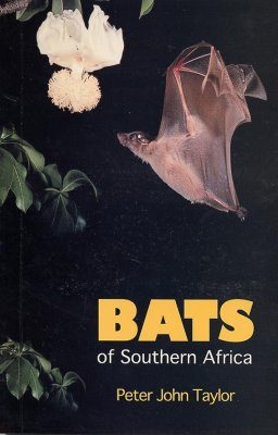 Bats of Southern Africa