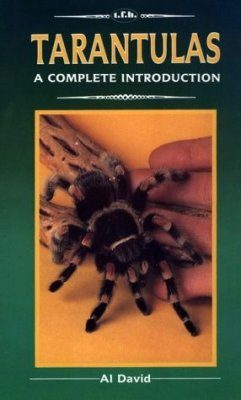 Tarantulas: A Complete Introduction