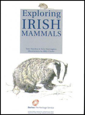 Exploring Irish Mammals