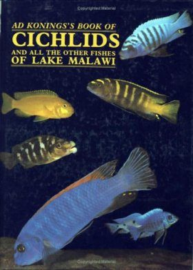 Ad Koning's Book of Cichlids