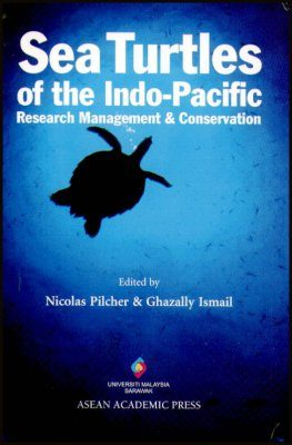 Sea Turtles of the Indo-Pacific