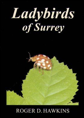 Ladybirds of Surrey