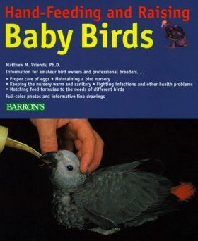 Hand-Feeding and Raising Baby Birds