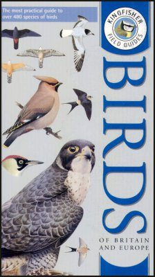 Kingfisher Field Guide to the Birds of Britain and Europe