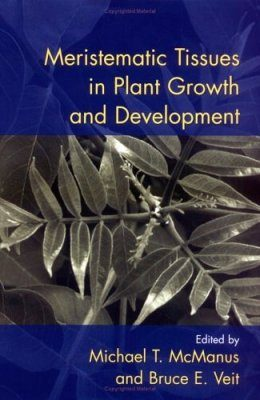 Meristematic Tissues in Plant Growth and Development