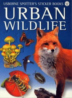 Urban Wildlife - Usborne Spotters's Sticker Books