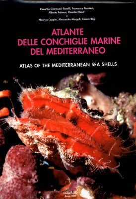 Atlas of the Mediterranean Seashells / Atlante delle Conchiglie Marine del Mediterraneo, Volume 7