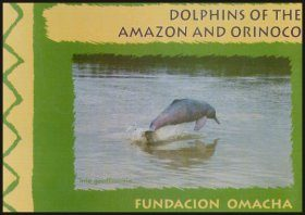Dolphins of the Amazon and Orinoco