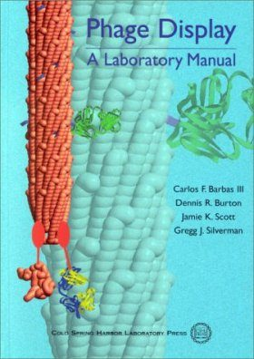 Phage Display: A Laboratory Manual