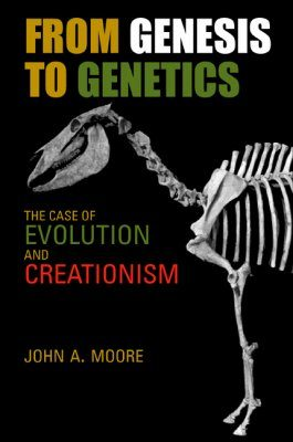 From Genesis to Genetics