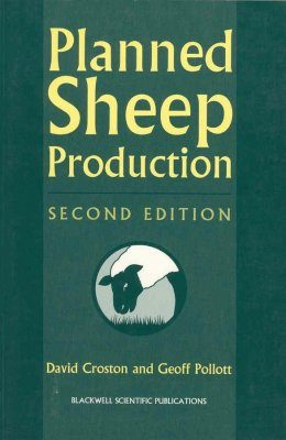 Planned Sheep Production