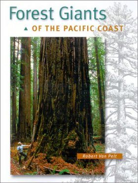 Forest Giants of the Pacific Coast