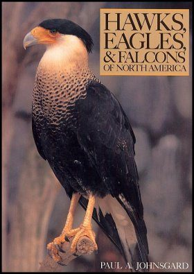 Hawks, Eagles and Falcons of North America
