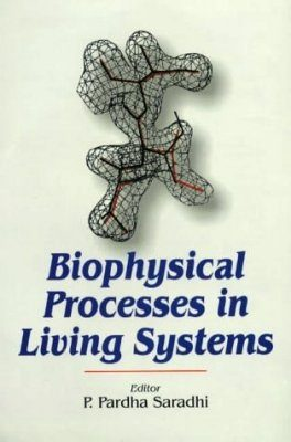 Biophysical Processes in Living Systems