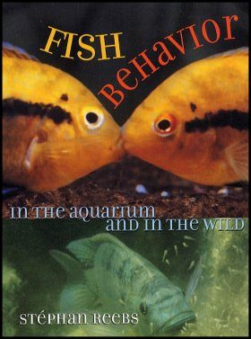 Fish Behavior in the Aquarium and in the Wild