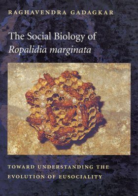 The Social Biology of Ropalidia marginata