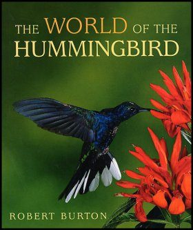 The World of the Hummingbird