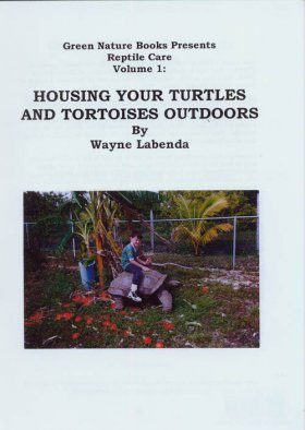 Housing your Turtles and Tortoises Outdoors