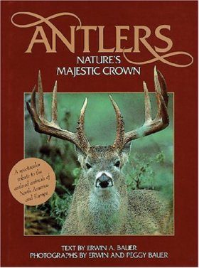 Antlers: Nature's Majestic Crown