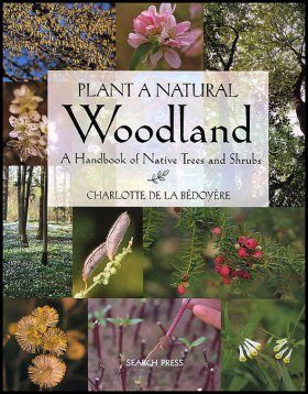 Plant a Natural Woodland