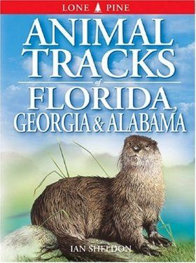 Animal Tracks of Florida, Georgia and Alabama