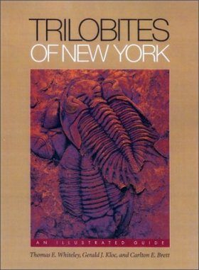 Trilobites of New York State