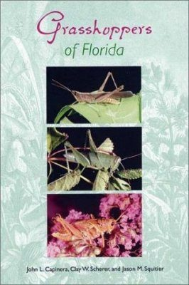 Grasshoppers of Florida