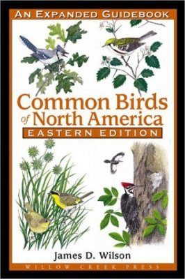Common Birds of North America: Eastern Edition