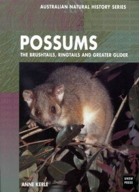 Possums: The Brushtails, Ringtails and Greater Glider